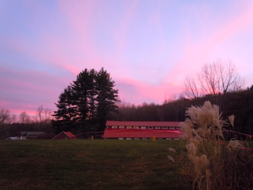 sunset snow farm